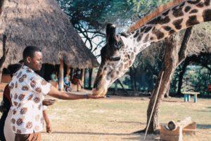 kenia safari und baden